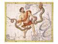 Ophiucus ou serpentaire