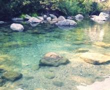 eaux-vivifiantes