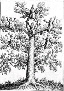 arbre-sagesse