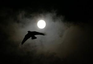 nuit-night1