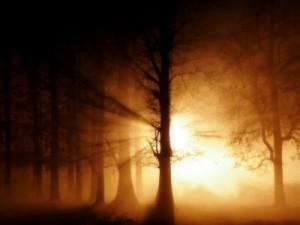 sombre-paysage