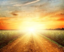 chemin-de-vie-life-road