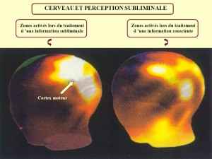 Zones activés lors du traitement. d 'une information subliminale. Zones activés lors du traitement. d 'une information consciente. Cortex moteur.